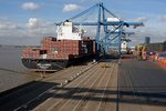 London Port Trade Recovers